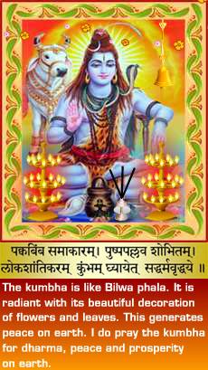 Shiva - Vishnu Temple, Livermore